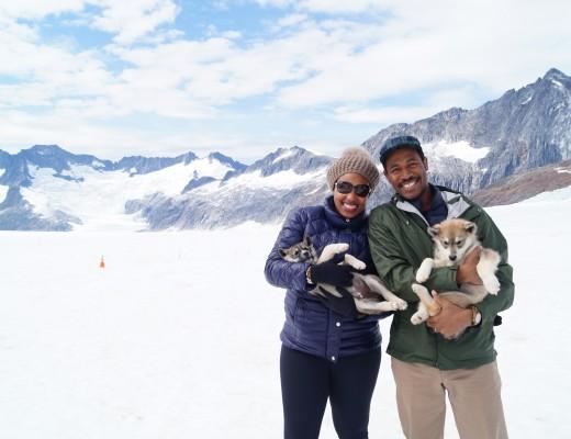 Juneau - Dogsledding on Herbert Glacier